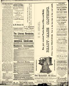 Le Mars Daily Liberal, July 05, 1881, Page 4
