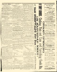 Le Mars Daily Liberal, April 06, 1882, Page 3