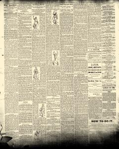 Le Mars Semi Weekly Sentinel, February 10, 1891, Page 2