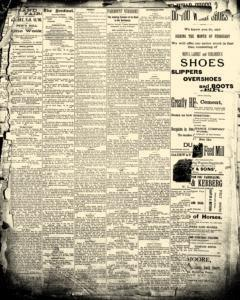 LeMars Sentinel, February 11, 1890, Page 5