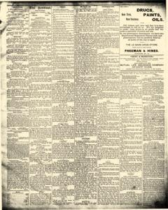 LeMars Sentinel, March 14, 1890, Page 3