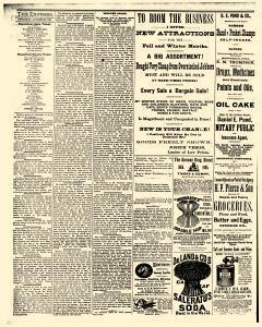 Monticello Express, October 29, 1885, Page 4
