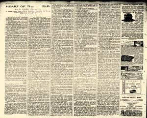Rippey Reporter, November 09, 1895, Page 2
