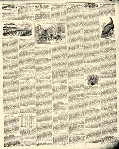 Waterloo Courier, January 22, 1896, Page 15
