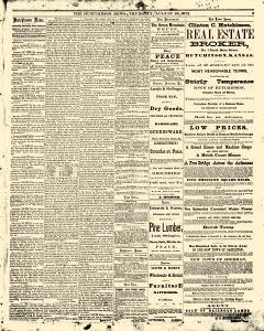 Hutchinson News, August 29, 1872, Page 3