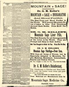 Hutchinson News, March 12, 1890, Page 4