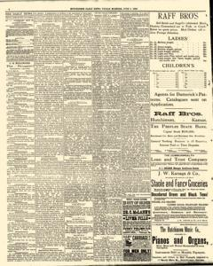 Hutchinson News, June 06, 1890, Page 4