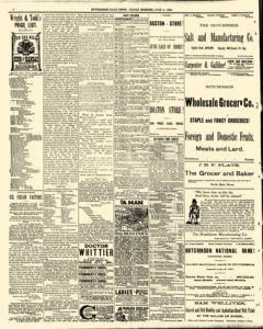 Hutchinson News, June 06, 1890, Page 6