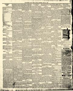 Hutchinson News, June 29, 1890, Page 8