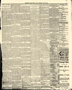 Hutchinson News, June 29, 1890, Page 3