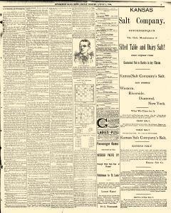 Hutchinson News, August 01, 1890, Page 3