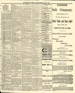 Hutchinson News, August 07, 1890, Page 3