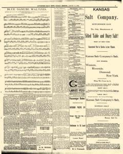 Hutchinson News, August 10, 1890, Page 3