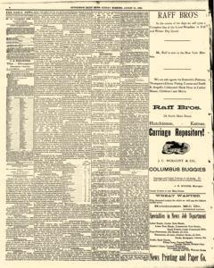 Hutchinson News, August 24, 1890, Page 4