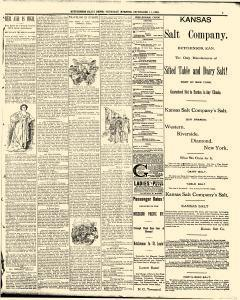 Hutchinson News, September 11, 1890, Page 3
