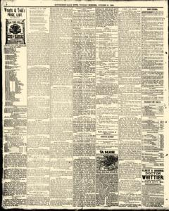 Hutchinson News, October 21, 1890, Page 3