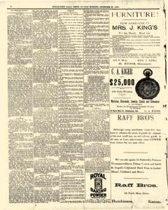 Hutchinson News, December 28, 1890, Page 8