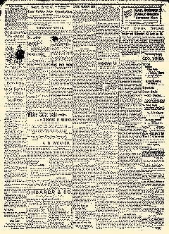 Lawrence Daily World, August 29, 1898, Page 3