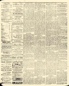 Lawrence Morning News, January 13, 1884, Page 7