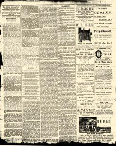 Bath Independent, January 03, 1880, Page 2