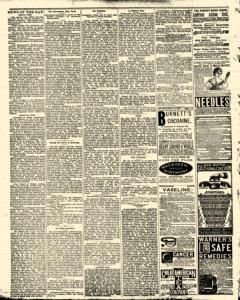 Bath Independent, February 07, 1880, Page 4
