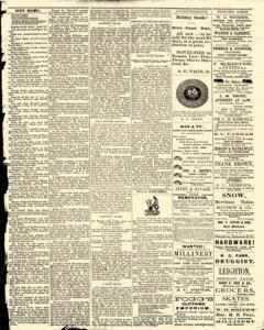 Bath Independent, February 07, 1880, Page 3