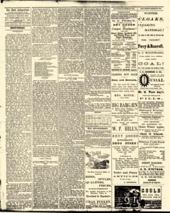 Bath Independent, February 14, 1880, Page 2