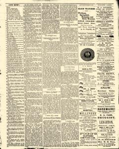Bath Independent, February 14, 1880, Page 3