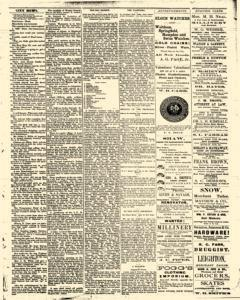 Bath Independent, February 21, 1880, Page 3