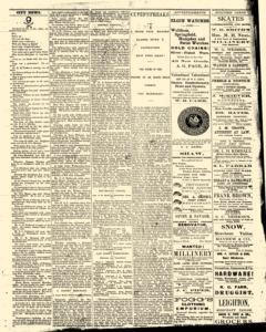 Bath Independent, February 28, 1880, Page 3