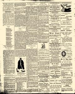 Bath Independent, March 13, 1880, Page 2