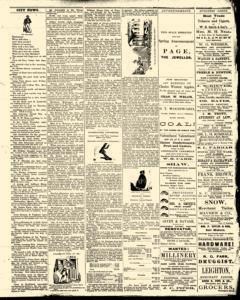 Bath Independent, March 13, 1880, Page 3