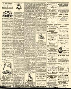 Bath Independent, March 20, 1880, Page 2