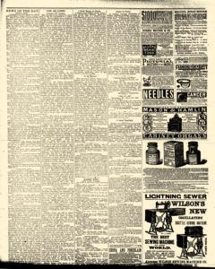 Bath Independent, April 10, 1880, Page 4
