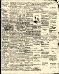 News, September 08, 1891, Page 3