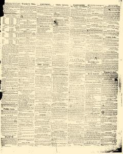 Hagers Town Torch Light and Public Advertiser, February 19, 1846, Page 3