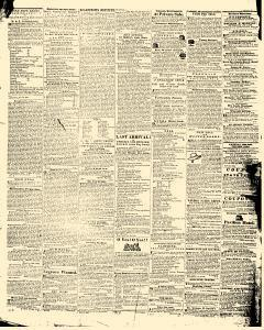 Hagers Town Torch Light and Public Advertiser, February 19, 1846, Page 4