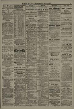 Boston Daily Globe, October 15, 1877, Page 7