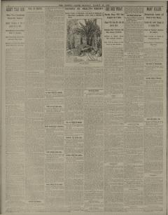 Boston Daily Globe, March 20, 1899, Page 4