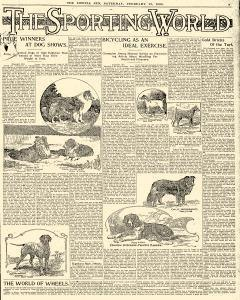 Lowell Sun, February 19, 1898, Page 17