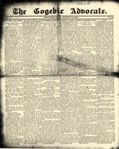 Gogebic Advocate, August 22, 1891, Page 1