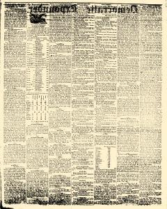 Democratic Expounder, November 06, 1856, Page 2