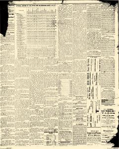 Albert Lea Freeborn County Standard, November 15, 1877, Page 5