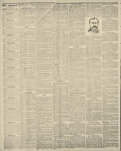 Albert Lea Freeborn County Standard, May 23, 1889, Page 2