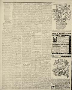 Albert Lea Freeborn County Standard, May 23, 1889, Page 6