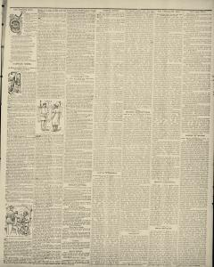 Albert Lea Freeborn County Standard, May 30, 1889, Page 7