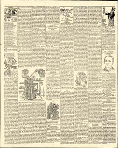 Albert Lea Freeborn County Standard, May 25, 1898, Page 4