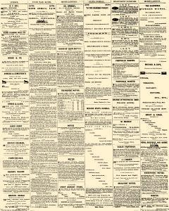 Nevada State Journal, September 11, 1879, Page 4