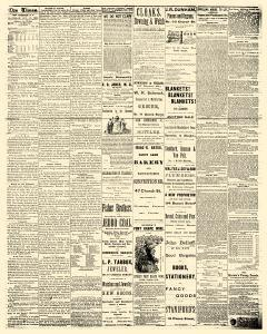 New Brunswick Daily Times, November 17, 1883, Page 3