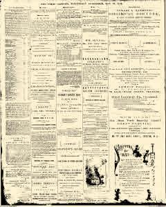 Trenton Times, May 16, 1883, Page 3